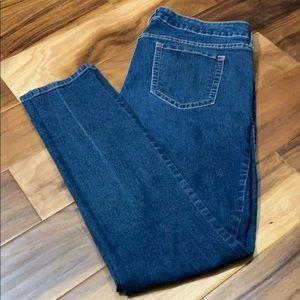 Torrid Skinny Denim Jeans